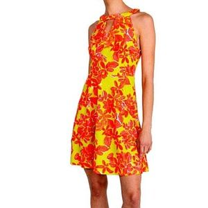 NWT Aryeh antrhopologie floral A- line mini dress